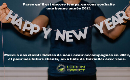 Meilleurs Voeux 2021 / Happy New Year 2021